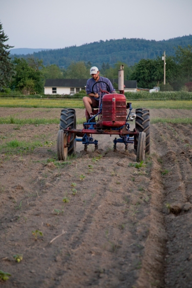 Farmer and his tractor